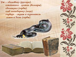 Уж – «домовик» (русские), «стопанин» - хозяин (болгары), «домакин» (сербы), «