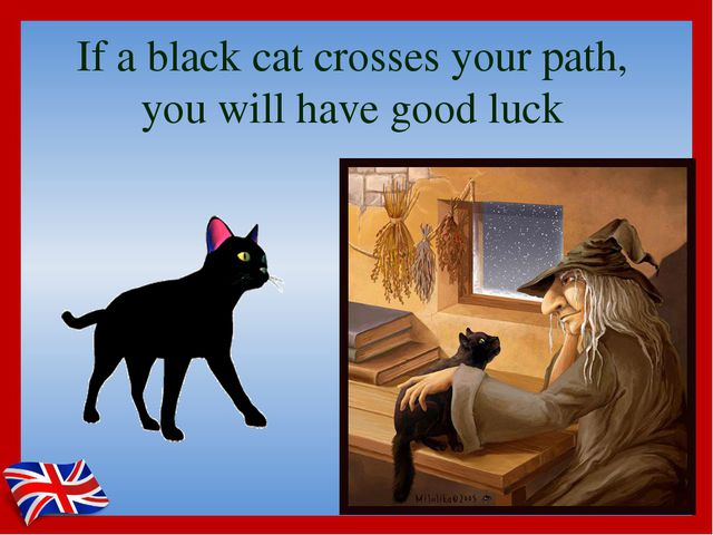 If a black cat crosses your path, you will have good luck