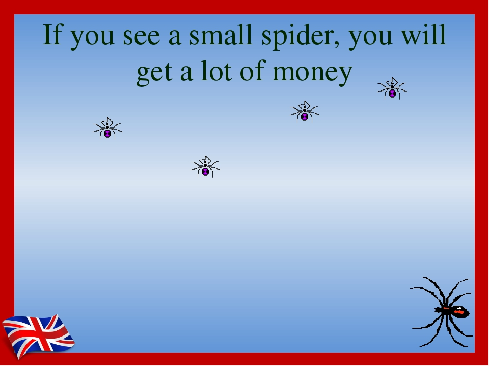 If you see a small spider, you will get a lot of money