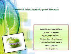 Семейный экологический проект «Запасы» Выполнила ученица 3 класса Язвинская
