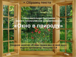 Образовательная программа эколого-биологической направленности «Окно в природ