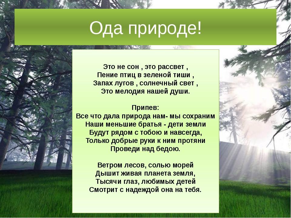 Ода природе! Это не сон , это рассвет , Пение птиц в зеленой тиши , Запах луг...
