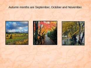 Autumn months are September, October and November.