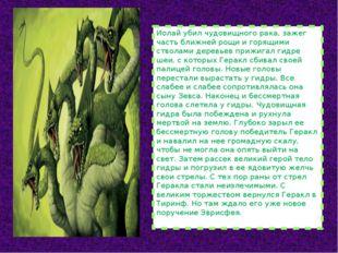 Иолай убил чудовищного рака, зажег часть ближней рощи и горящими стволами дер