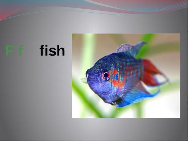 F f fish