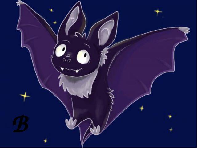 B b a bat B