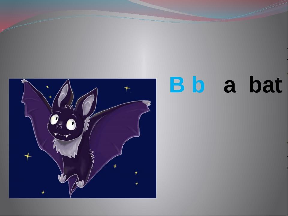 B b a bat