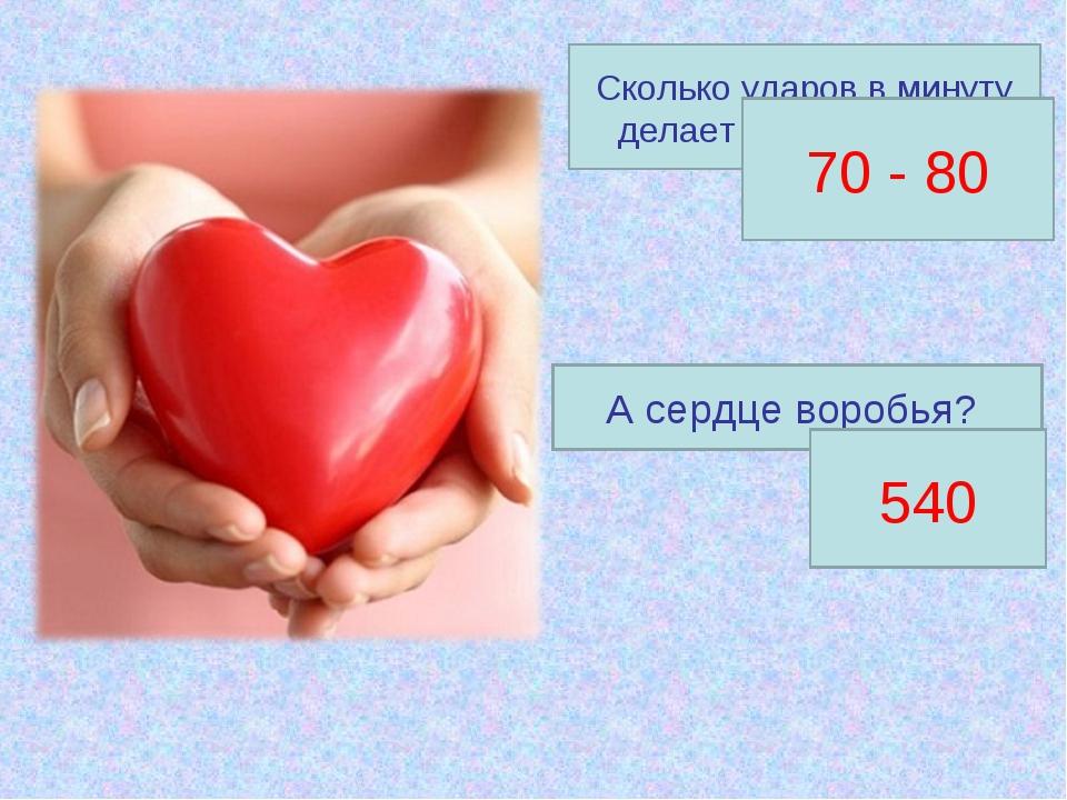 Сколько ударов в минуту делает наше сердце? 70 - 80 А сердце воробья? 540