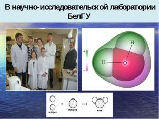 В научно-исследовательской лаборатории БелГУ