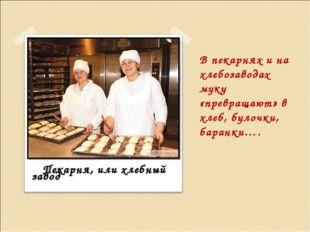 В пекарнях и на хлебозаводах муку «превращают» в хлеб, булочки, баранки…. Пек