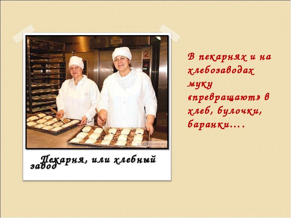В пекарнях и на хлебозаводах муку «превращают» в хлеб, булочки, баранки…. Пек...