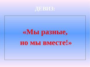 ДЕВИЗ: «Мы разные, но мы вместе!»