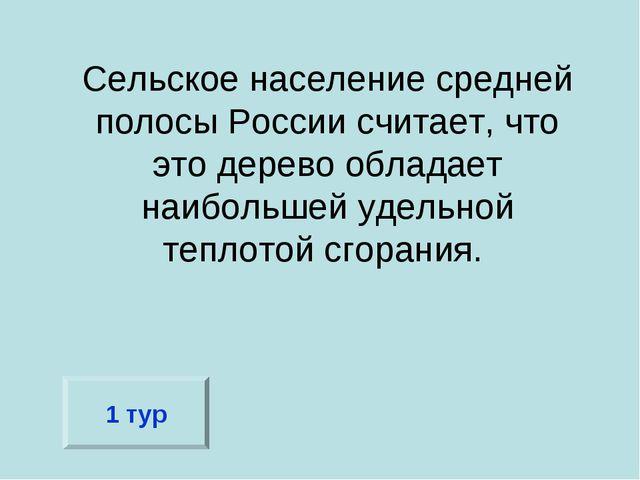 Сельское население средней полосы России считает, что это дерево обладает наи...
