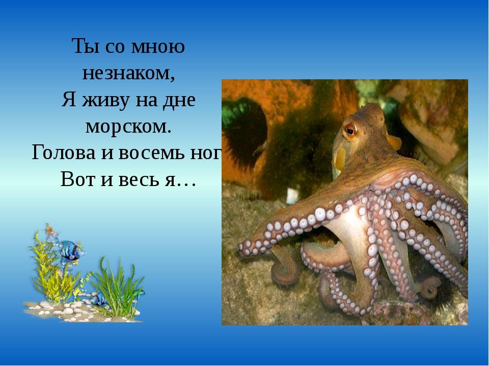Ты со мною незнаком, Я живу на дне морском. Голова и восемь ног. Вот и весь я…
