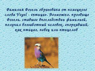 Фамилия Фогель образована от немецкого слова Vogel - «птица». Возможно, прозв