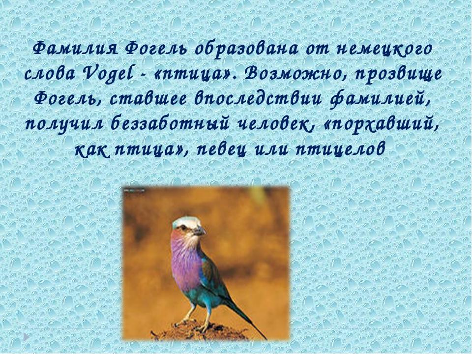 Фамилия Фогель образована от немецкого слова Vogel - «птица». Возможно, прозв...