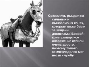 Сражались рыцари на сильных и выносливых конях, которые также были защищены д