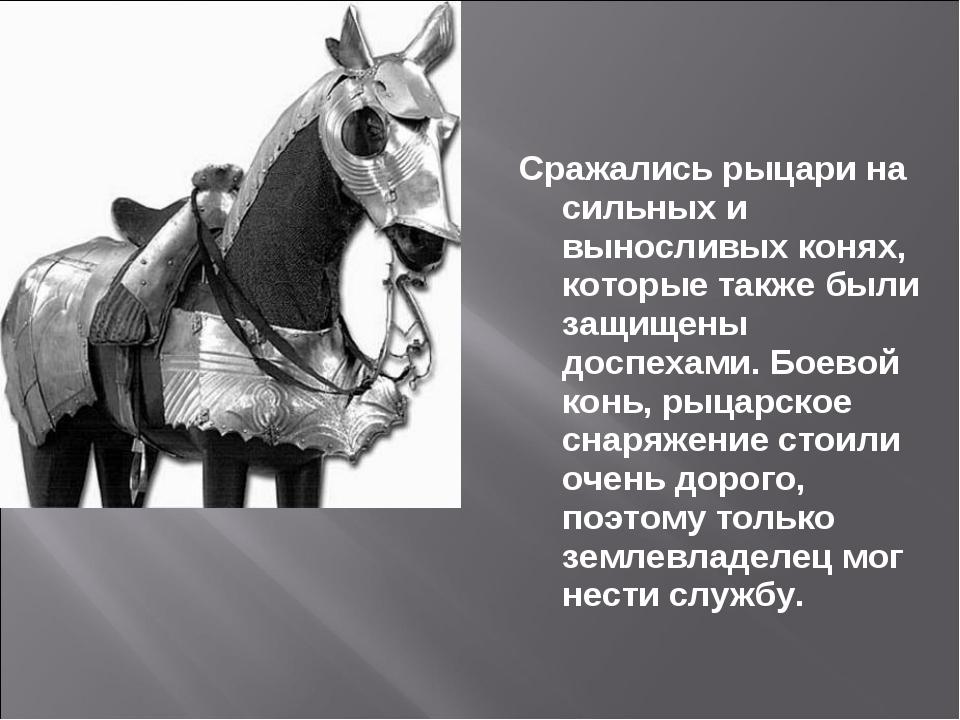 Сражались рыцари на сильных и выносливых конях, которые также были защищены д...