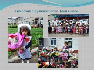 Гимназия с.Кушнаренково. Моя школа.