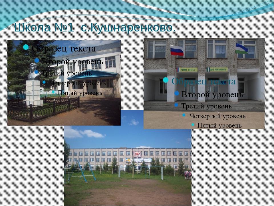 Школа №1 с.Кушнаренково.