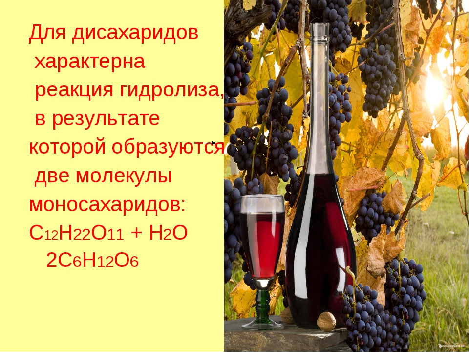 Для дисахаридов характерна реакция гидролиза, в результате которой образуются...