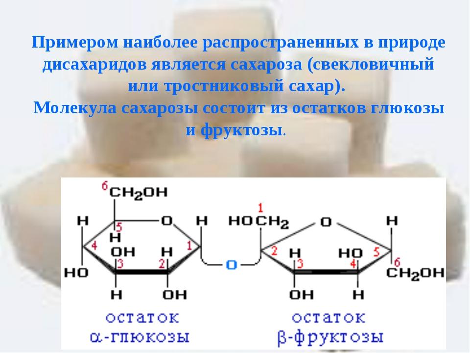 Примером наиболее распространенных в природе дисахаридов является сахароза (...