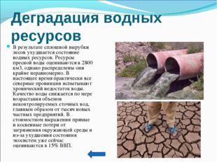 Дегpадация водных pесуpсов В результате сплошной вырубки лесов ухудшается сос