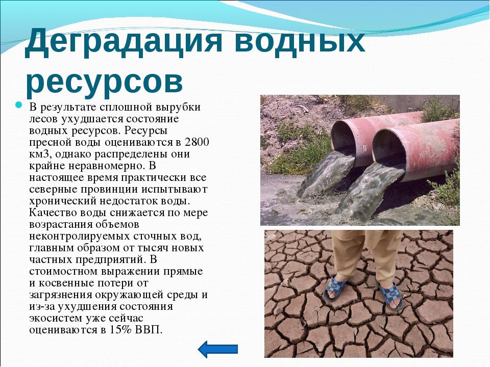 Дегpадация водных pесуpсов В результате сплошной вырубки лесов ухудшается сос...