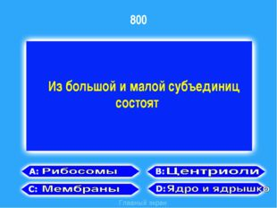 800 Главный экран Из большой и малой субъединиц состоят