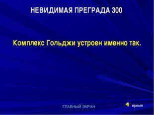 НЕВИДИМАЯ ПРЕГРАДА 300 ГЛАВНЫЙ ЭКРАН Комплекс Гольджи устроен именно так. время