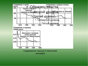 Содержание свинца в организме человека