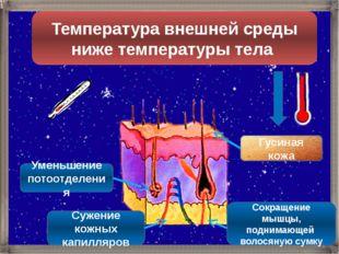 Температура внешней среды ниже температуры тела Гусиная кожа Уменьшение потоо