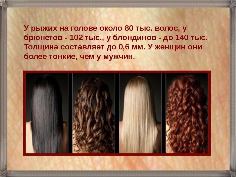 У рыжих на голове около 80 тыс. волос, у брюнетов - 102 тыс., у блондинов - д...