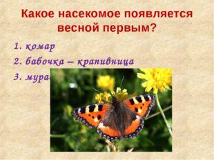 Какое насекомое появляется весной первым? комар бабочка – крапивница муравей