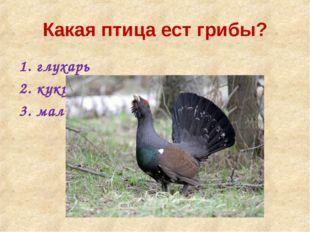 Какая птица ест грибы? глухарь кукушка малиновка