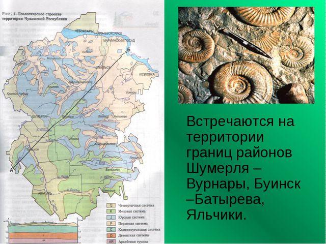 Встречаются на территории границ районов Шумерля – Вурнары, Буинск –Батырева...