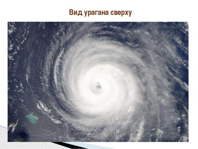 Вид урагана сверху