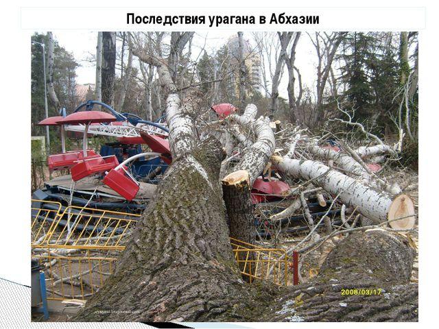 Последствия урагана в Абхазии