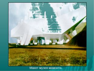 Макет музея мамонта.