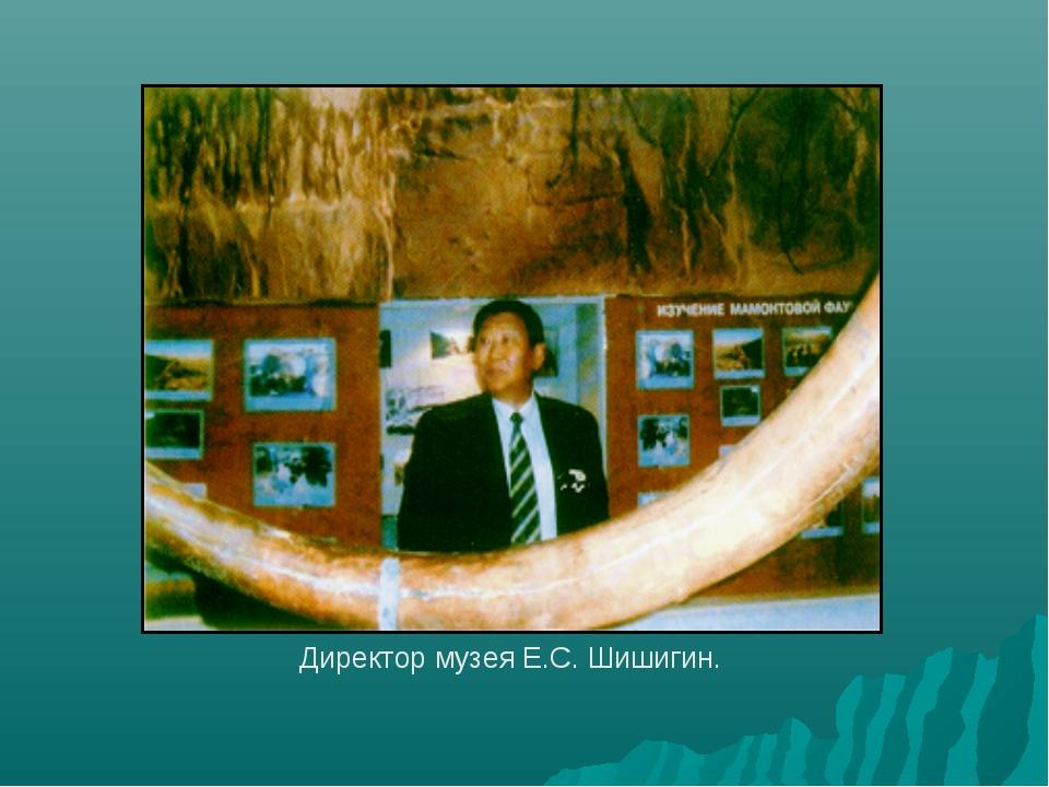 Директор музея Е.С. Шишигин.