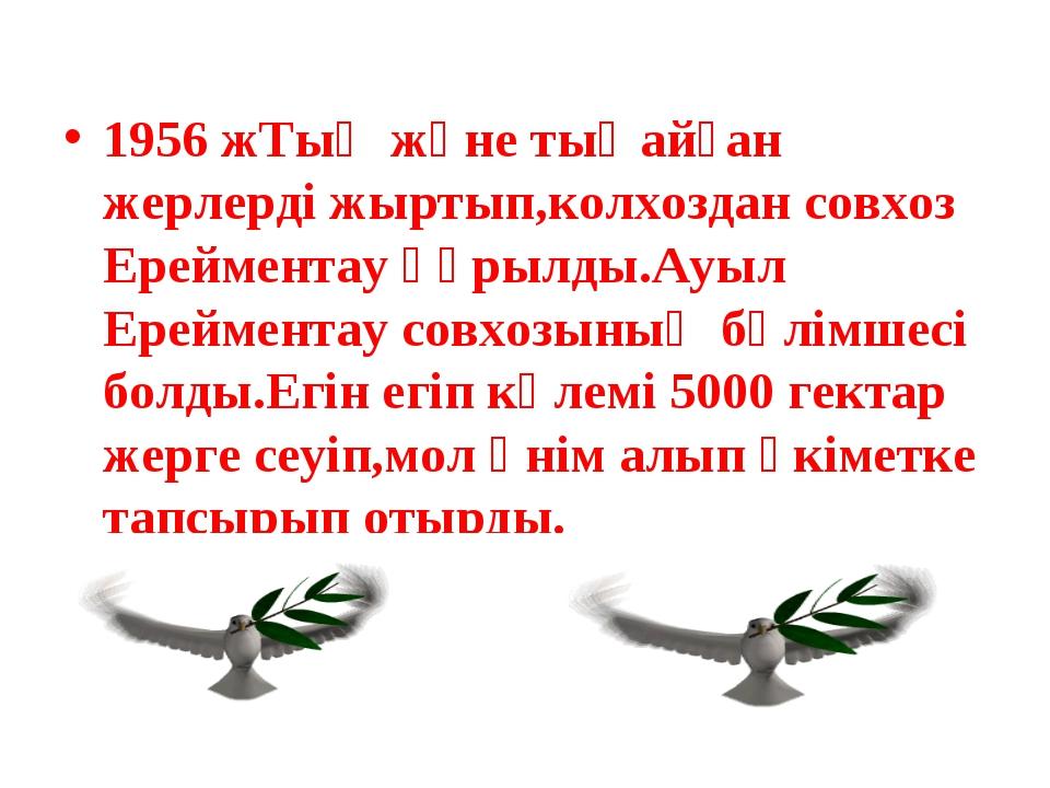 1956 жТың және тыңайған жерлерді жыртып,колхоздан совхоз Ерейментау құрылды.А...
