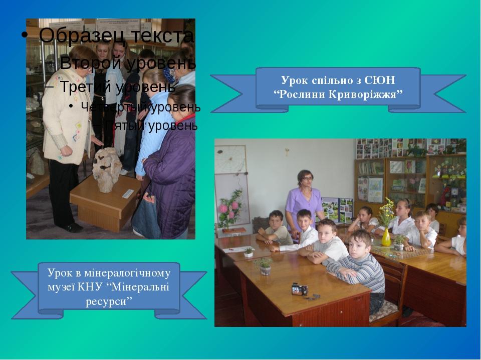 """Урок в мінералогічному музеї КНУ """"Мінеральні ресурси"""" Урок спільно з СЮН """"Ро..."""