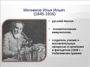 Мечников Илья Ильич (1845-1916) русский биолог, основоположник иммунологии,