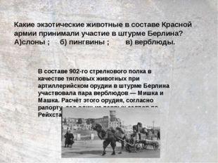 Какие экзотические животные в составе Красной армии принимали участие в штурм