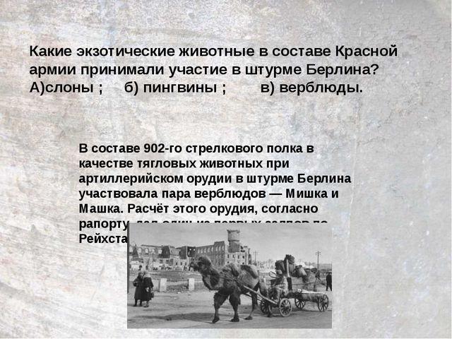 Какие экзотические животные в составе Красной армии принимали участие в штурм...