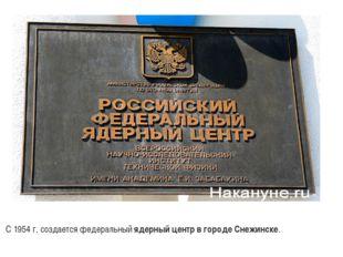 С 1954 г. создается федеральный ядерный центр в городе Снежинске.