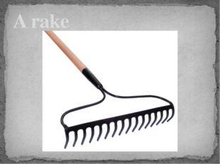 A rake