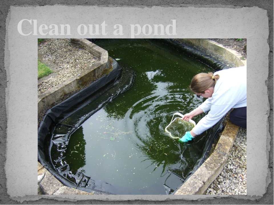 Clean out a pond