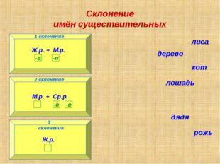 Склонение имён существительных 1 склонение 3 склонение 2 склонение лиса дерев