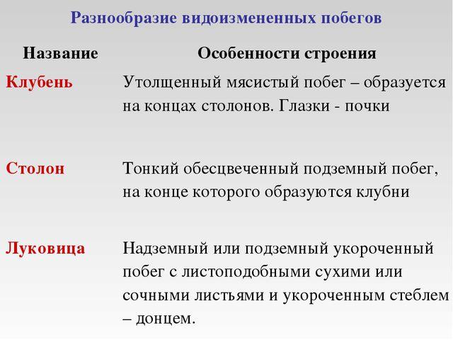 Разнообразие видоизмененных побегов НазваниеОсобенности строения КлубеньУто...